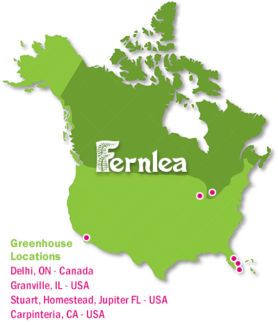 Fernlea Flowers greenhouse locations