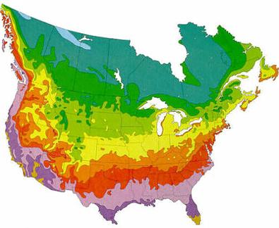 Fernlea Flowers Ltd. - Hardiness Zone Map